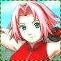 ♡•Sakura Haruno•♡