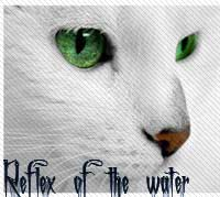 Reflex of the water