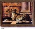 Jaguarra