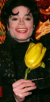 ЖелтыйТюльпан
