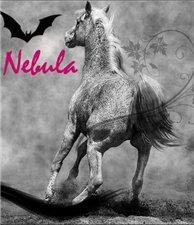 Necessary nebula
