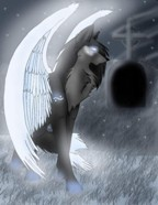 волк-ангел
