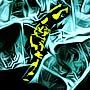 'salamandra