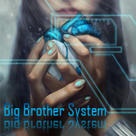 Big Brother System