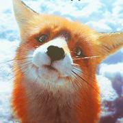 ленивая лисица