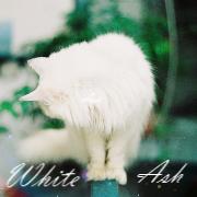 Белый Пепел
