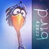 Долбанутая птичка