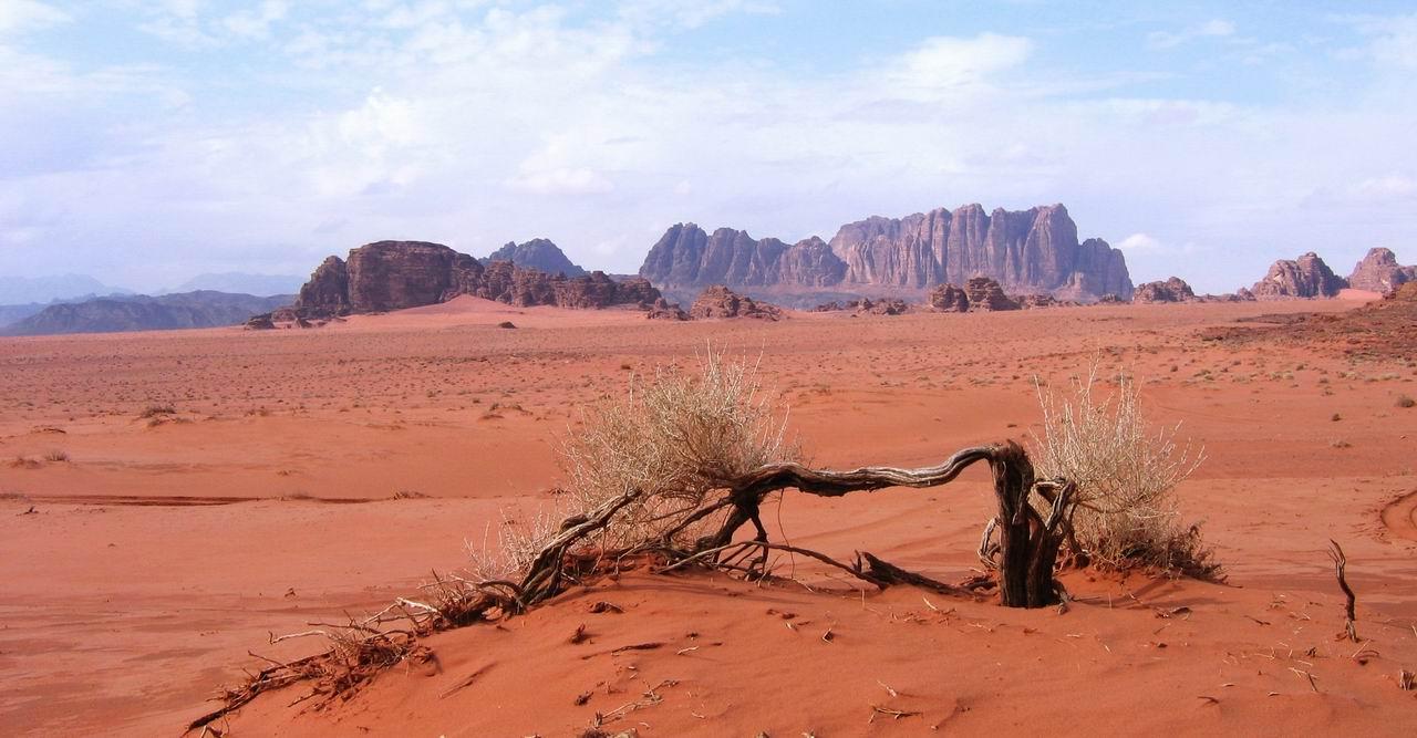 Картинки по запросу австралийская пустыня